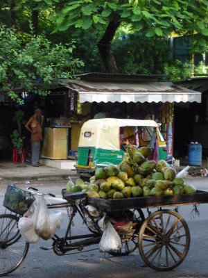 Delhi1blog