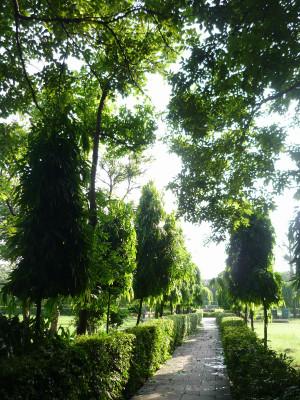Delhi3blog_2