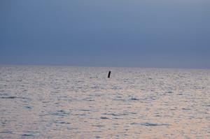 Sea2blog
