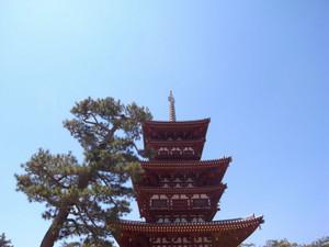 Nara8blog